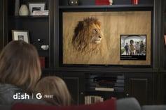 Dish Google Nest doorbell cam lifestyle